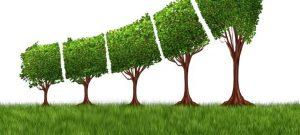 RIP Organic Growth