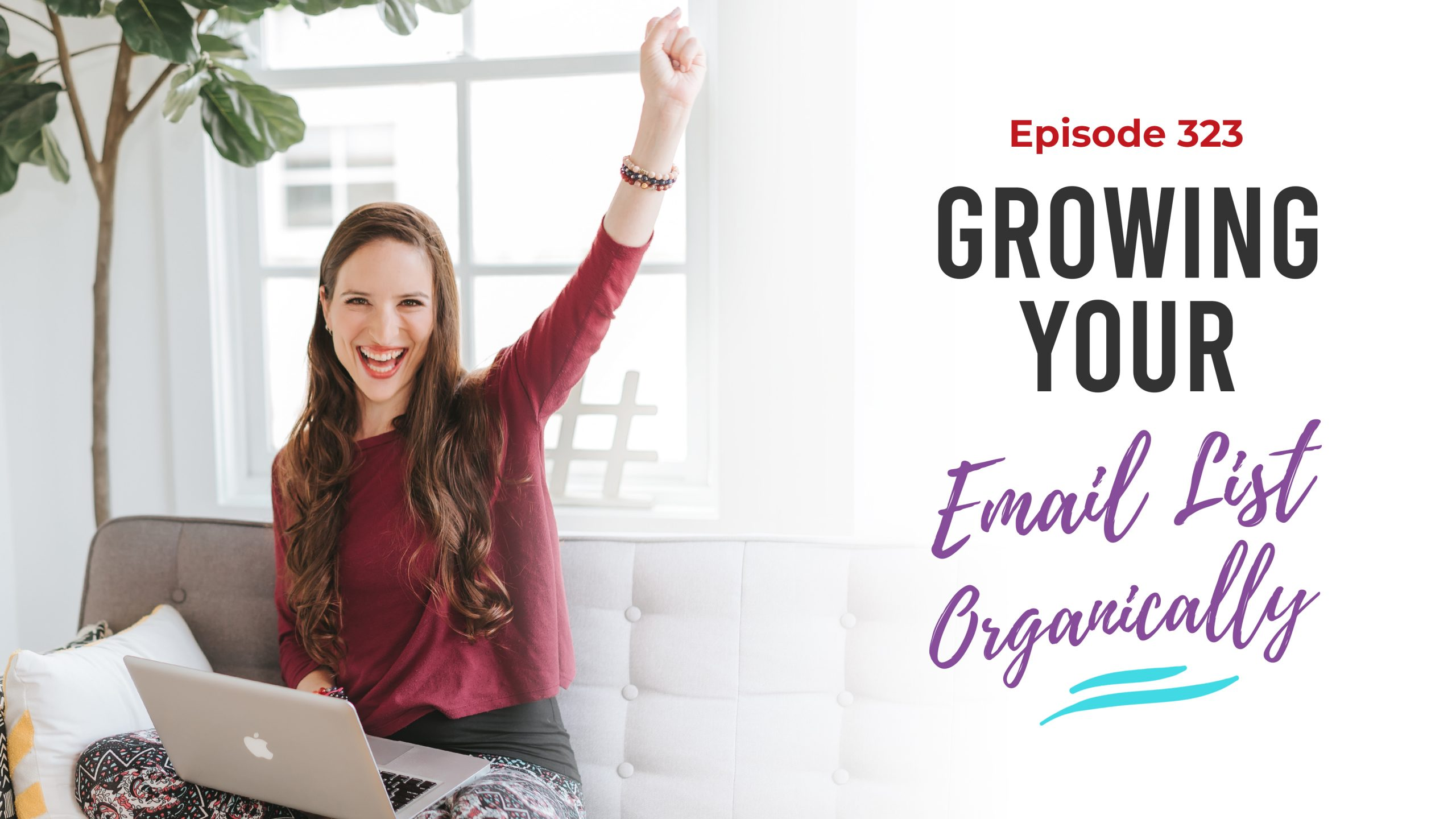 Ep. 323: Growing Your Email List Organically